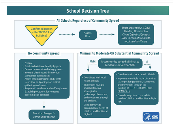 School Decision Tree